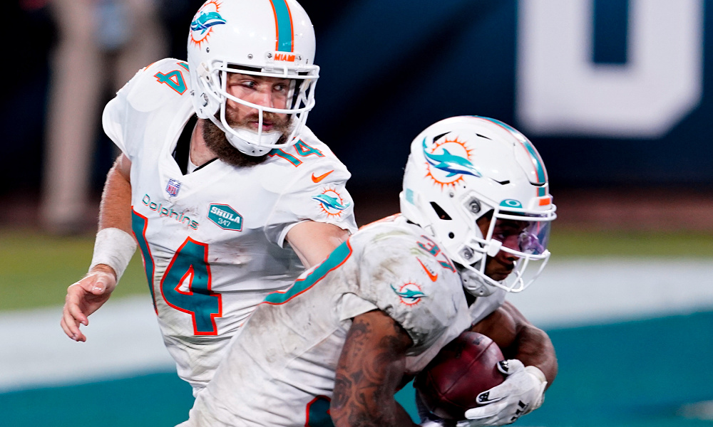 Seattle Seahawks Vs Miami Dolphins Prediction Game Preview