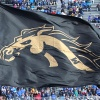 Western Michigan Broncos: CFN College Football Preview 2021
